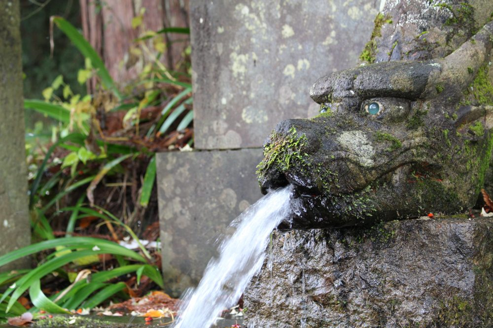 大崎滝谷の清水